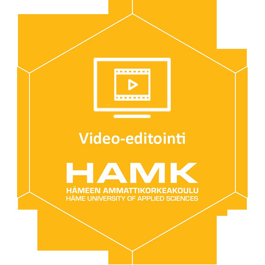 Video-editointi