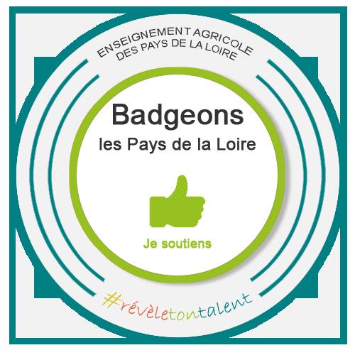 Soutien du projet Open Badge  Pays de la Loire