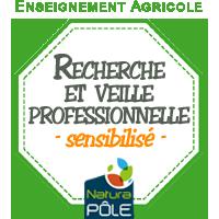 """Recherche numérique et veille professionnelle - Niveau """"sensibilisé"""""""