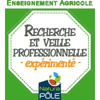 """Recherche numérique et veille professionnelle - Niveau """"expérimenté"""""""