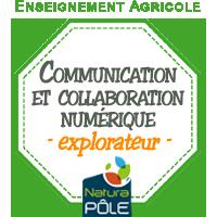 """Communication et collaboration numériques - Niveau """"explorateur"""""""