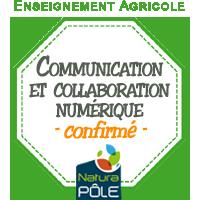 """Communication et collaboration numériques - Niveau """"confirmé"""""""