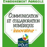 """Communication et collaboration numériques - Niveau """"innovateur"""""""