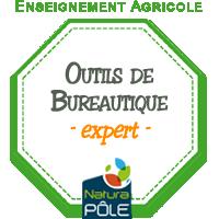 "Bureautique - Niveau ""expert"""