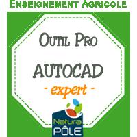 "AUTOCAD - Niveau ""expert"""